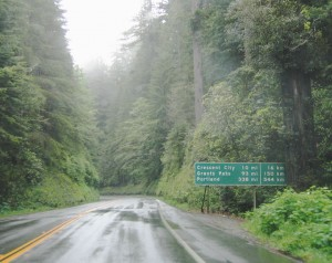 us-101_nb_del_norte_redwoods_06